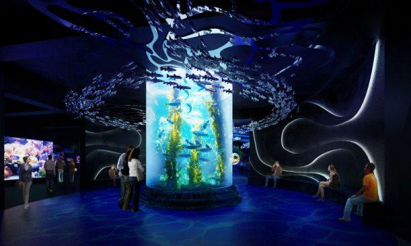 Aquarium Jakarta - CekAja