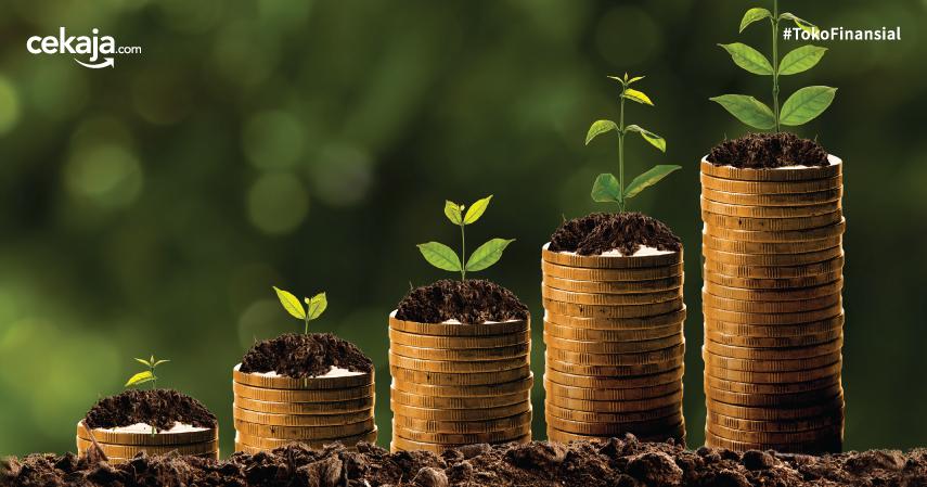 Artikel Newsletter CekAja Investasi Saham