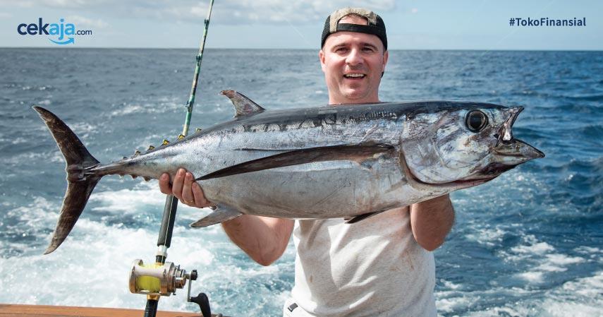 Ikan Tuna Mancing - CekAja
